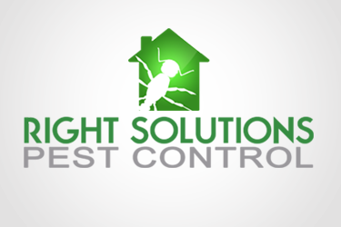 Right-Solutions-Pest-Control